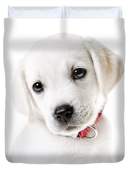Adorable Yellow Lab Puppy Duvet Cover by Diane Diederich
