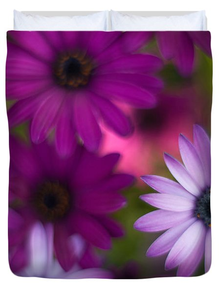 African Daisy Collage Duvet Cover by Mike Reid