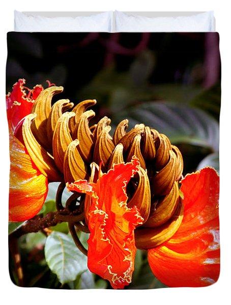 African Tulips Duvet Cover by Karon Melillo DeVega