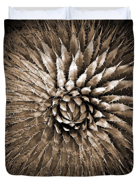Agave Spikes Sepia Duvet Cover by Alan Socolik