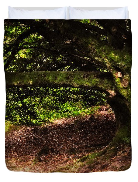 Alive Memory Of Thetrees. Glendalough. Ireland Duvet Cover by Jenny Rainbow