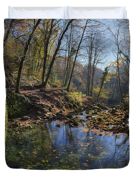 Allondon River Source Duvet Cover by Patrick Jacquet