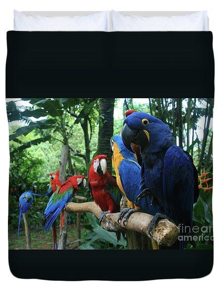 Aloha Kaua Aloha Mai No Aloha Aku Beautiful Macaw Duvet Cover by Sharon Mau