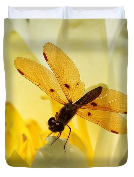 Amber Dragonfly Dancer Duvet Cover by Sabrina L Ryan