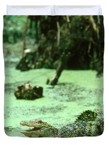 American Alligator Duvet Cover by Gregory G. Dimijian, M.D.