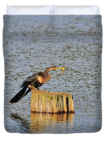 American Anhinga Angler Duvet Cover by Al Powell Photography USA