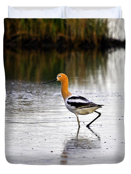 American Avocet Duvet Cover by Al Powell Photography USA