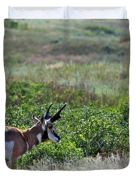 American Pronghorn Buck Duvet Cover by Karon Melillo DeVega