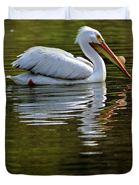 American White Pelican Duvet Cover by Elizabeth Winter