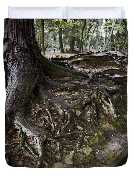 ANCIENT TREES of NARA PARK Duvet Cover by Daniel Hagerman