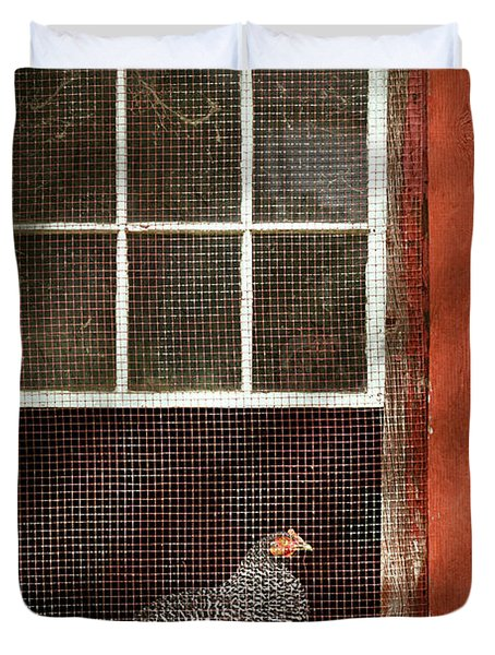 Animal - Bird - Chicken In A Window Duvet Cover by Mike Savad