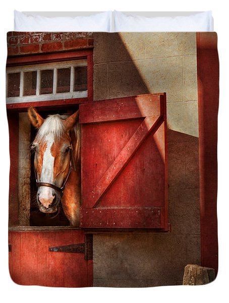 Animal - Horse - Calvins house  Duvet Cover by Mike Savad