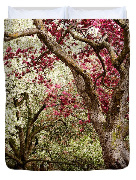 Apple Blossom Colors Duvet Cover by Joe Mamer