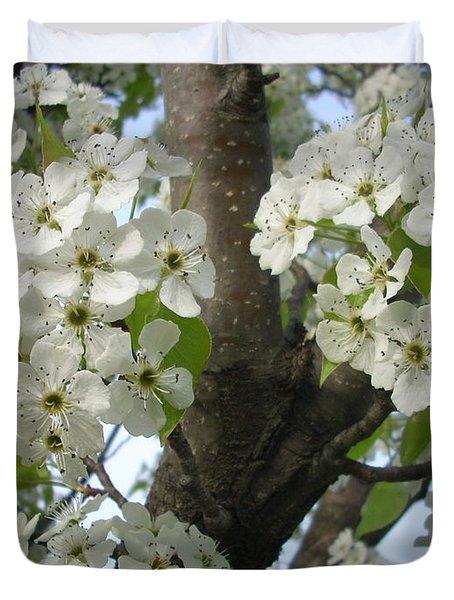 Apple Blossoms Duvet Cover by Randi Shenkman