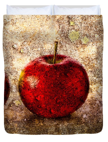 Apple Duvet Cover by Bob Orsillo