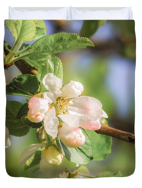Apple Tree Blossom - Vintage Duvet Cover by Hannes Cmarits