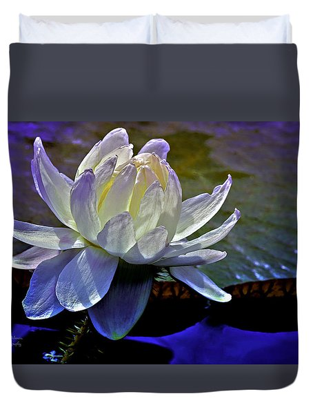 Aquatic Beauty In White Duvet Cover by Julie Palencia
