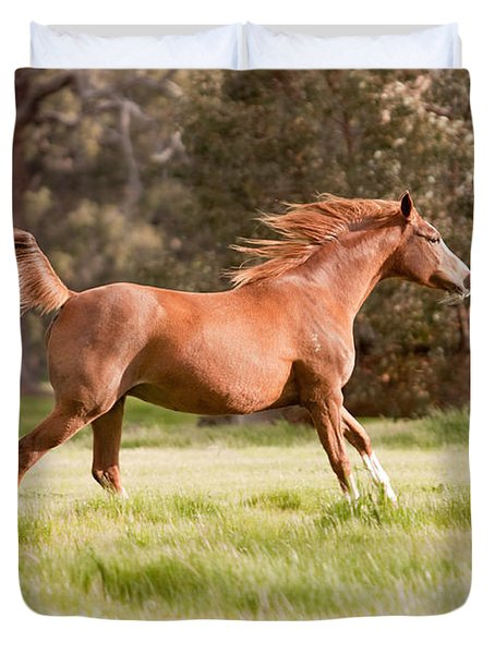 Arabian Horse Running Free Duvet Cover by Michelle Wrighton
