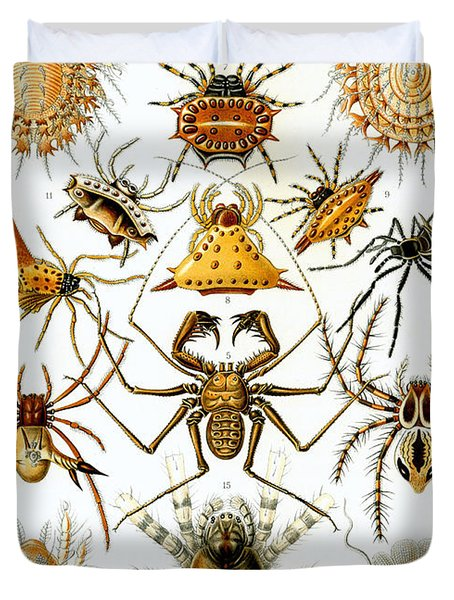 Arachnida Duvet Cover by Nomad Art And  Design