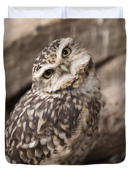 Are You Looking At Me? Duvet Cover by Anne Gilbert