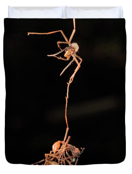Army Ants Building Bivouac Duvet Cover by Mark Moffett