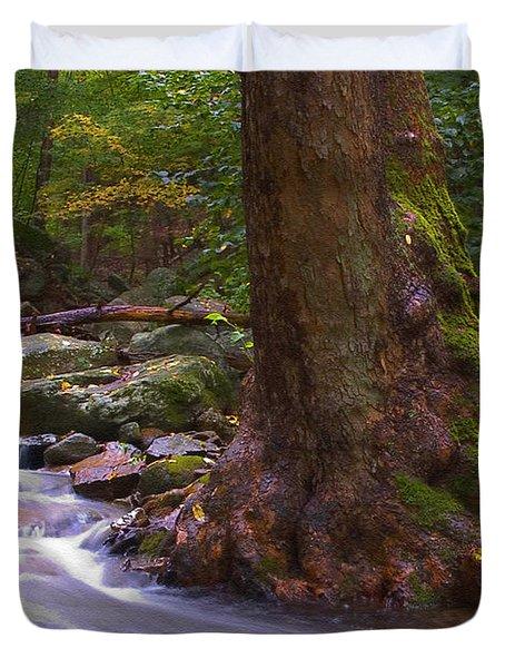 As The River Runs Duvet Cover by Karol Livote