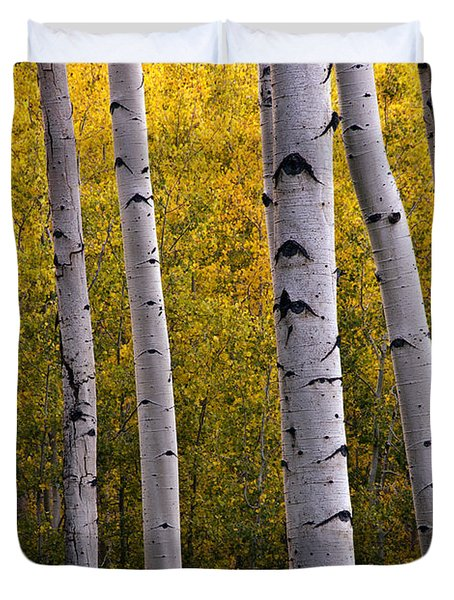Aspen Light 2 Duvet Cover by Dave Dilli
