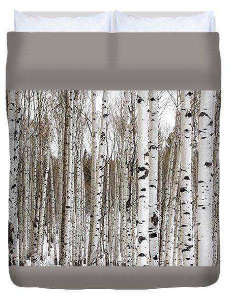 Aspens In Winter Panorama - Colorado Duvet Cover by Brian Harig