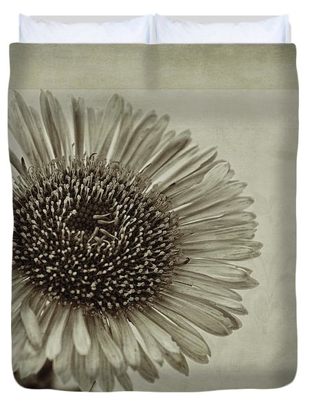 Aster With Textures Duvet Cover by John Edwards