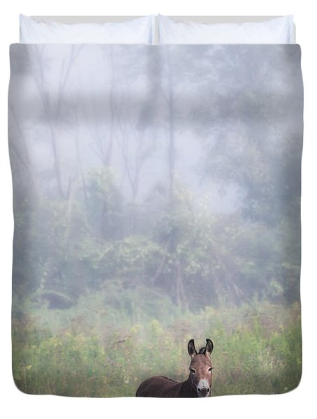 August Morning - Donkey In The Field. Duvet Cover by Gary Heller