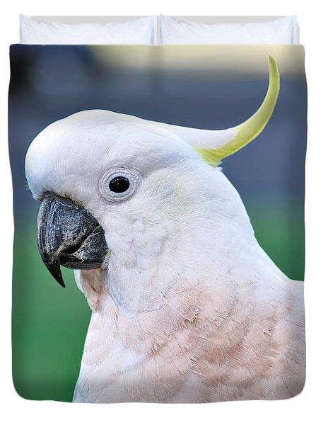 Australian Birds - Cockatoo Duvet Cover by Kaye Menner