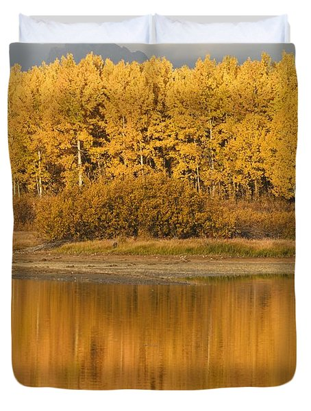Autumn Aspens Reflected In Snake River Duvet Cover by David Ponton