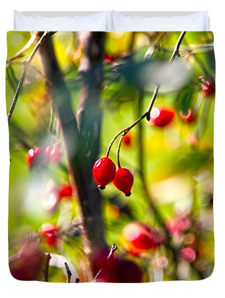 autumn berries  Duvet Cover by Stylianos Kleanthous