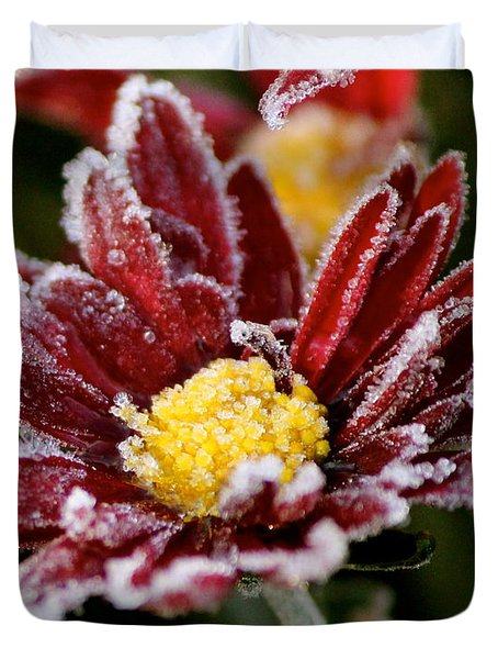 Autumn Frost Duvet Cover by Tiffany Erdman