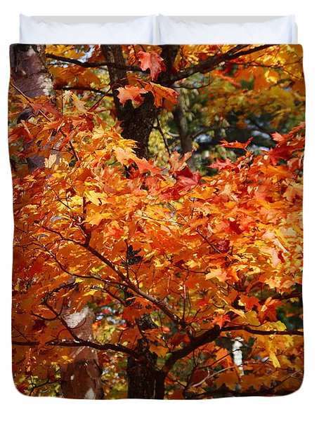 Autumn Gold Duvet Cover by Pat Speirs