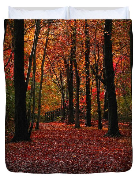 Autumn IIi Duvet Cover by Raymond Salani III