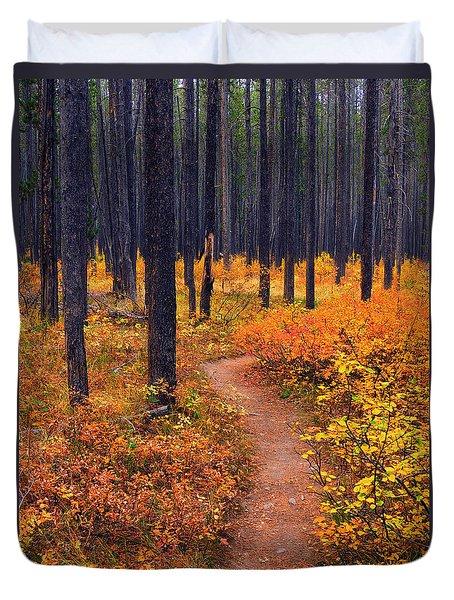 Autumn In Yellowstone Duvet Cover by Raymond Salani III