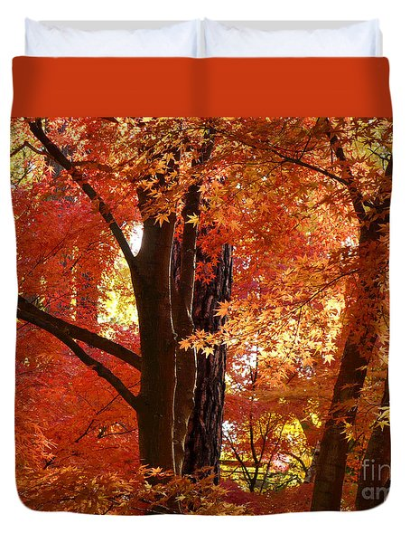 Autumn Leaves Duvet Cover by Carol Groenen