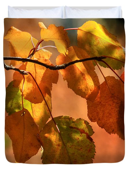 Autumn Leaves Duvet Cover by Donna Kennedy