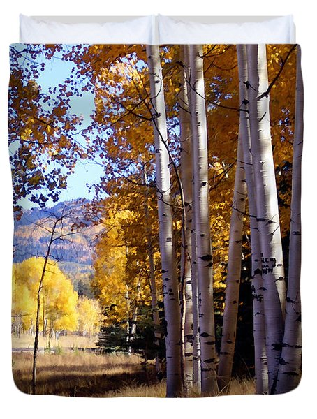 Autumn Paint Chama New Mexico Duvet Cover by Kurt Van Wagner