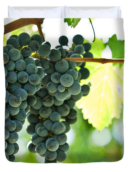 Autumn Ripe Red Wine Grapes Right Before Harvest Duvet Cover by Ulrich Schade
