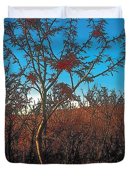 Autumn Duvet Cover by Terry Reynoldson