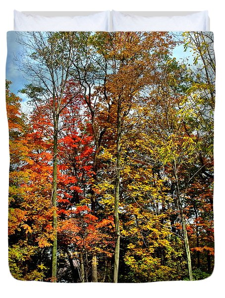 Autumnal Foliage Duvet Cover by Frozen in Time Fine Art Photography