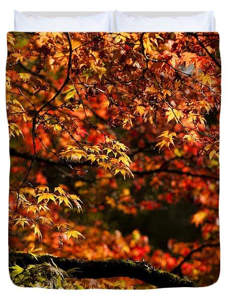 Autumn's Glory Duvet Cover by Anne Gilbert