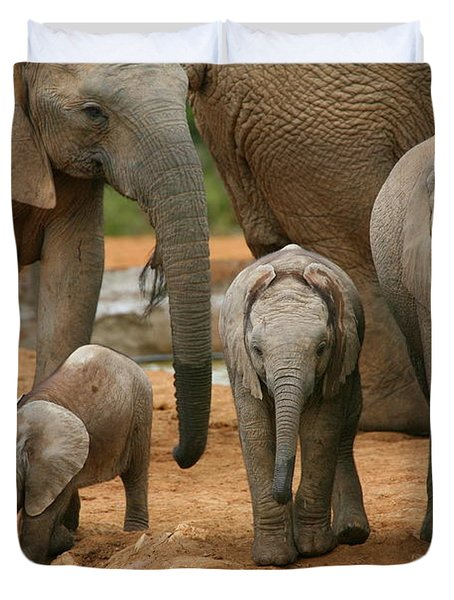 Baby African Elephants Duvet Cover by Bruce J Robinson