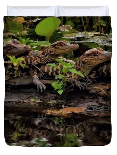 Baby Alligators Reflection Duvet Cover by Dan Sproul