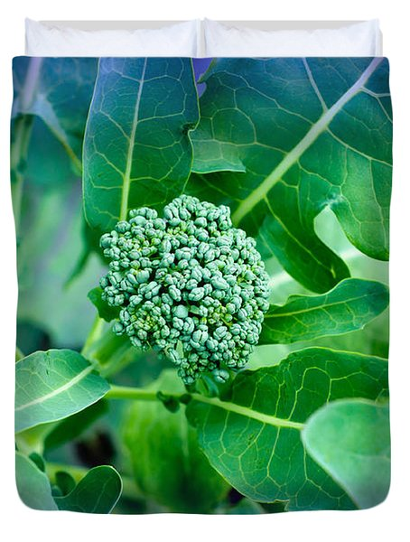Baby Broccoli - Vegetable - Garden Duvet Cover by Andee Design