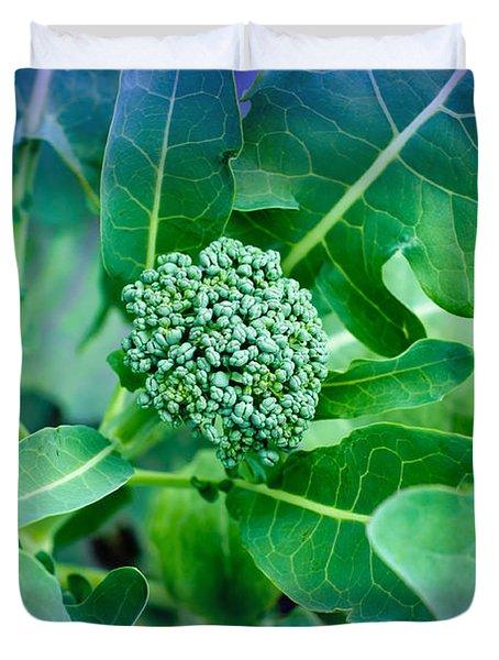 Baby Broccoli - Vegetable - Garden Duvet Cover by Andee Design