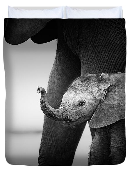 Baby Elephant Next To Cow  Duvet Cover by Johan Swanepoel