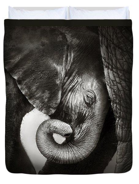 Baby Elephant Seeking Comfort Duvet Cover by Johan Swanepoel